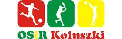 logo_osir_01.png